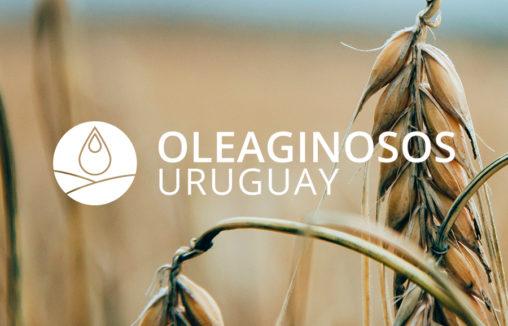 Oleaginosos Uruguay / Germán Dotta